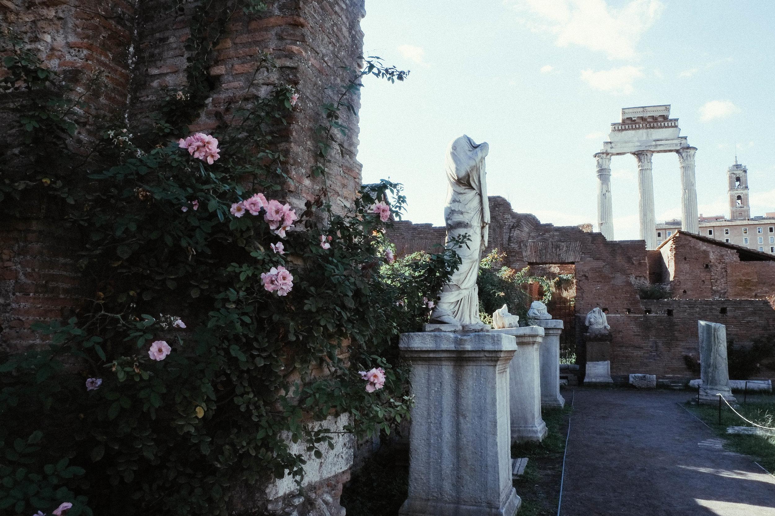 Lesly Lotha - Roman Forum 5