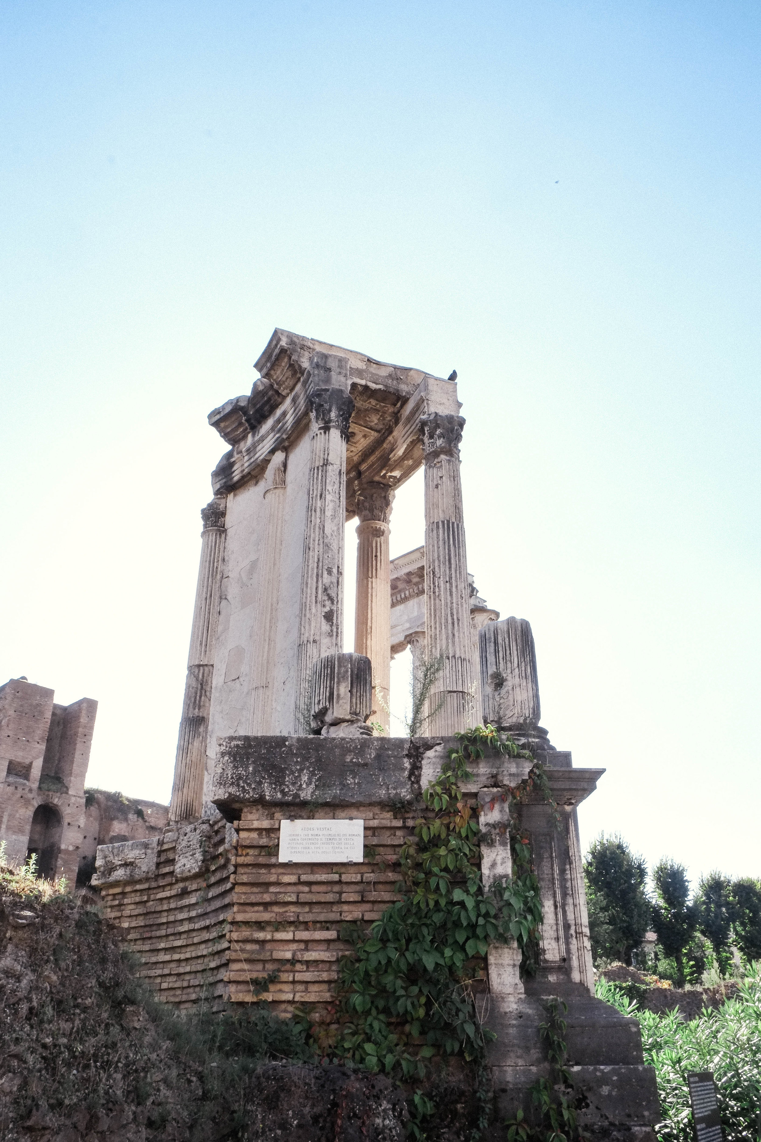 Lesly Lotha - Roman Forum 3