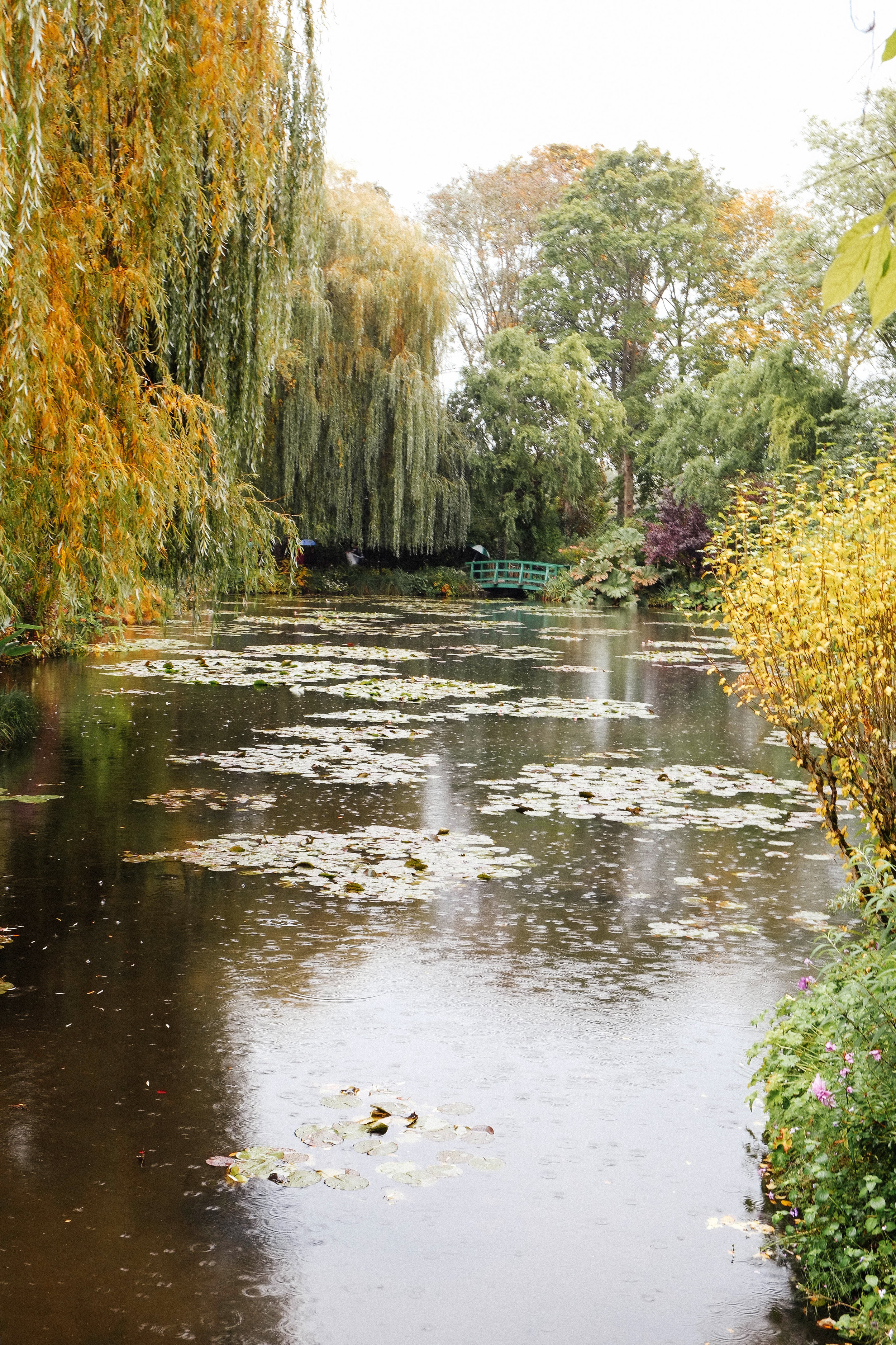 Lesly Lotha - Giverny - France - Europe - 3