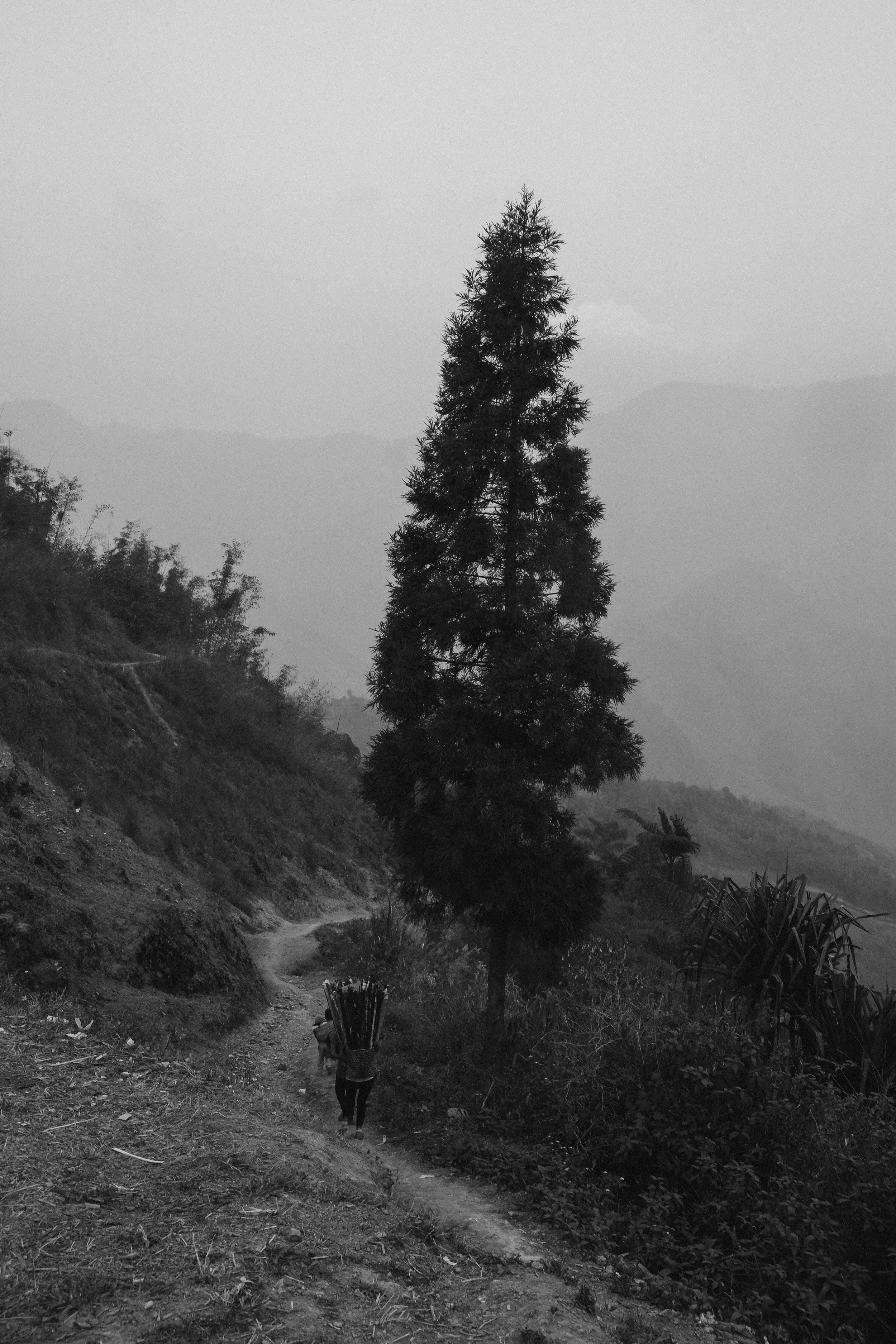 Lesly Lotha_Mon Nagaland 03