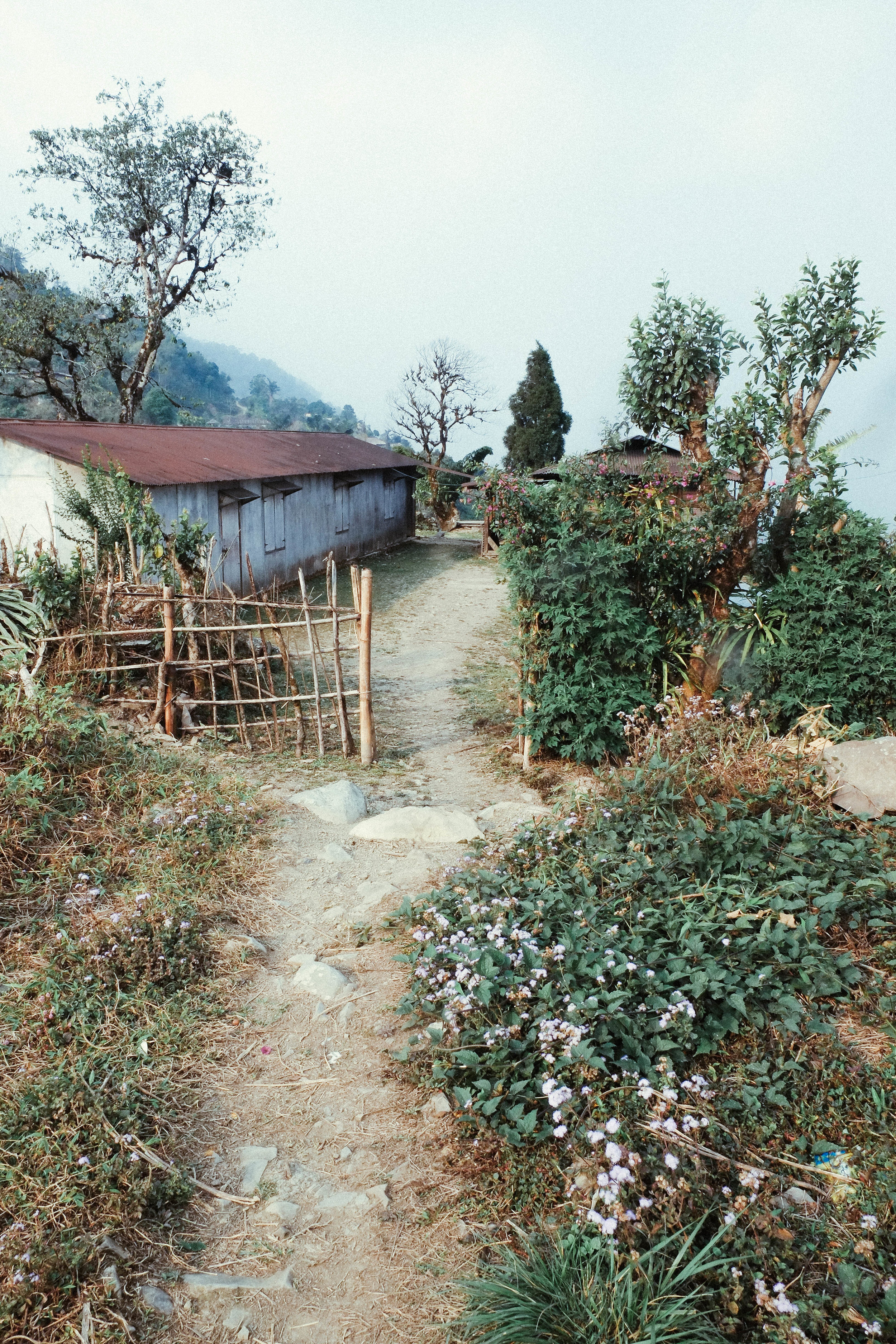 Lesly Lotha_Mon Nagaland 10