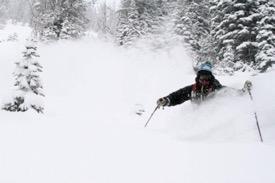 Image 1: Our program assistant, Ben Rossetter, enjoying some powder snow. Photo: Benjamin Glatz