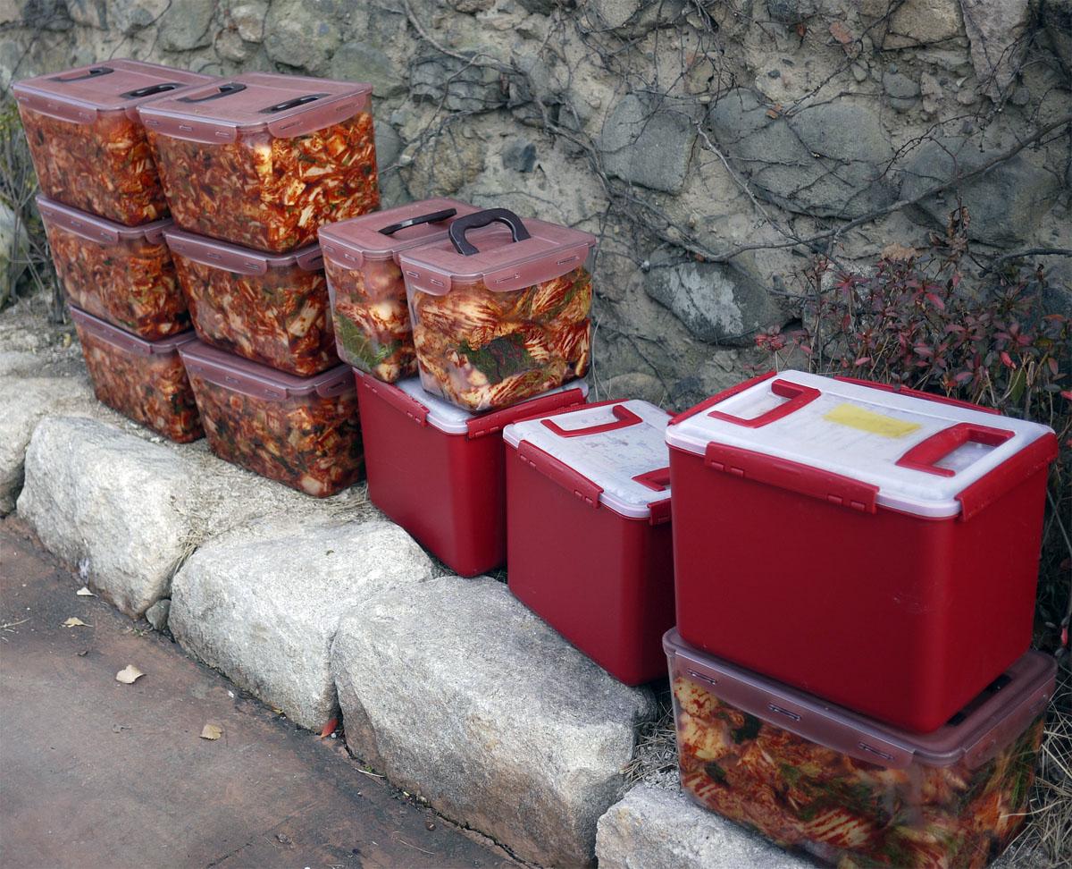 fazendo-kimchi