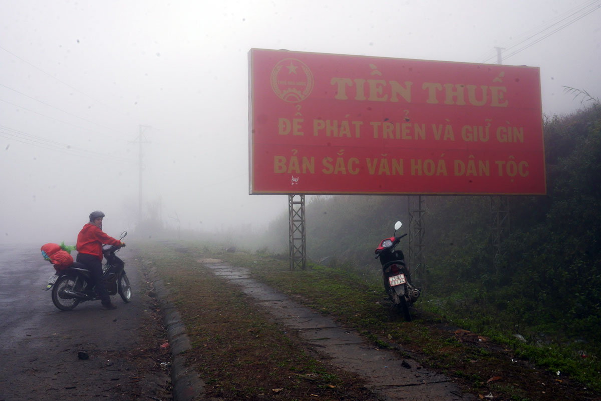 Neblina e umidade na estrada
