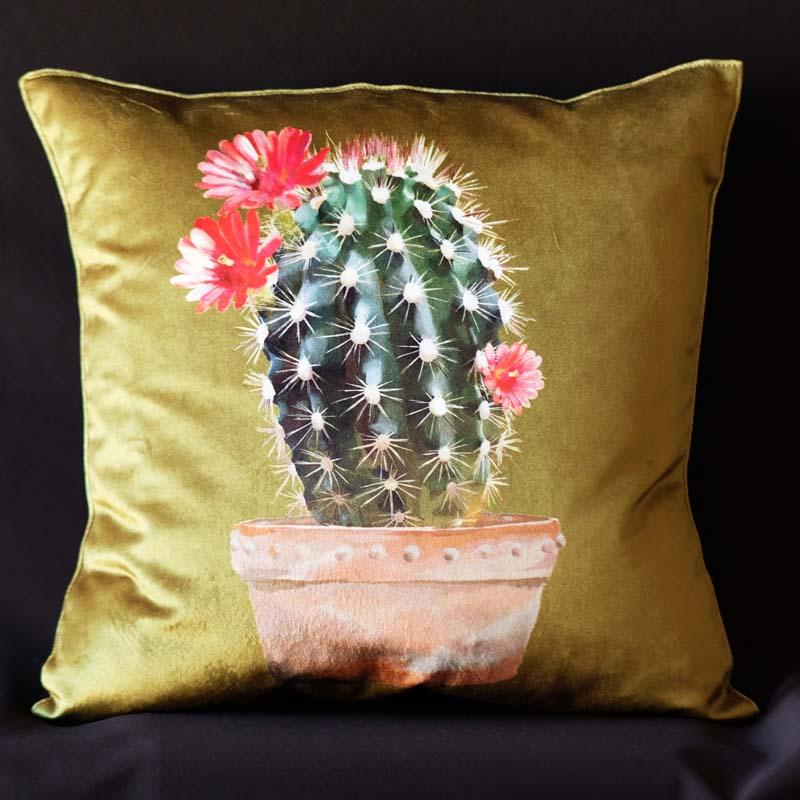 Cactus Olive - Velvet