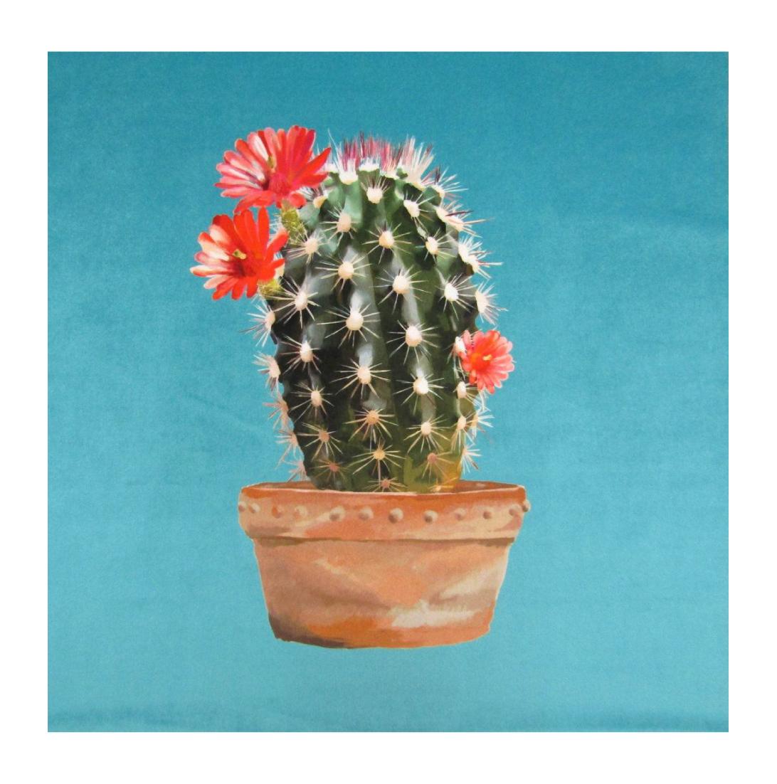 Cactus Turquoise - Velvet