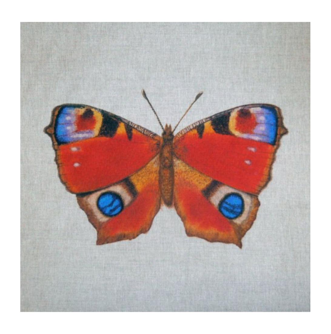Butterfly (Peacock) - Linen