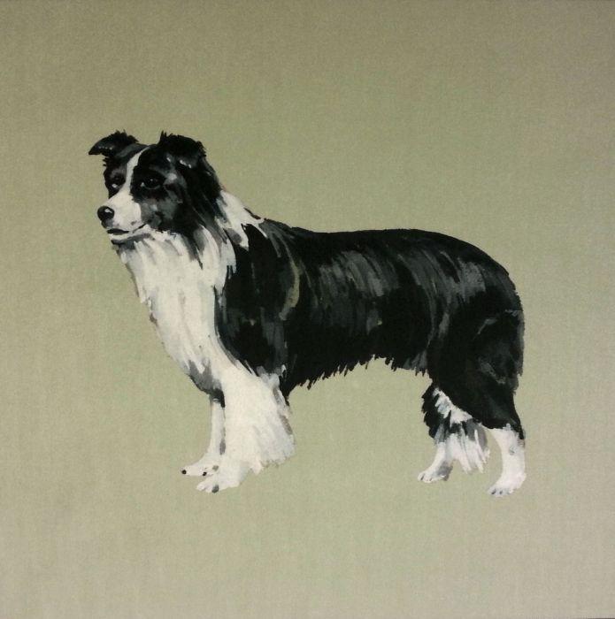 Sheepdog - Velvet