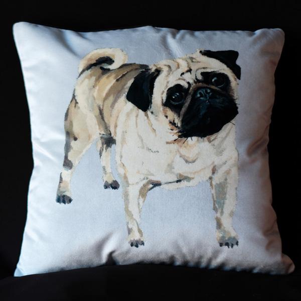 Canine Pug - Velvet.jpg