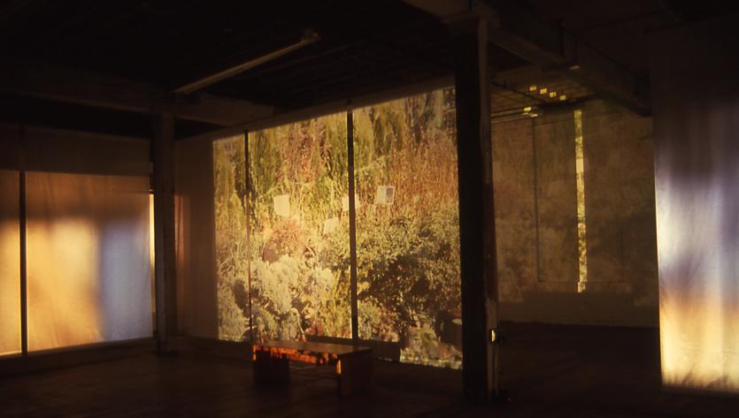 Installation - Artificial Environment, Simon Aldridge, 1999 -Somerville, Massachusetts
