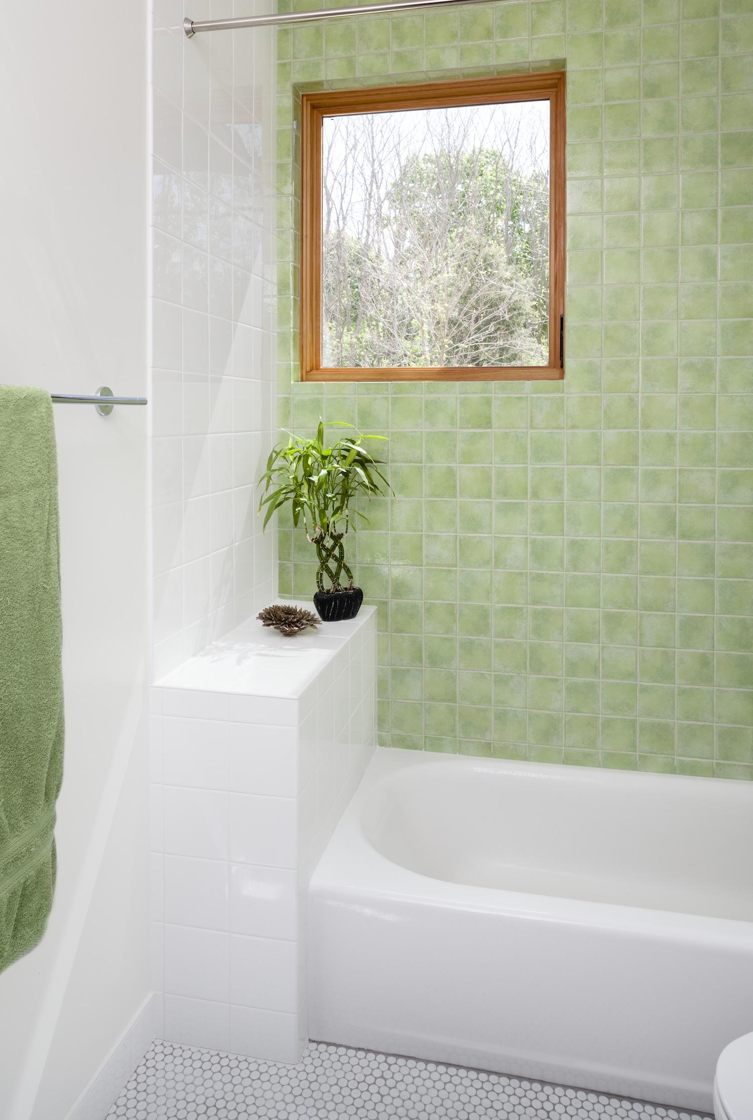 schickel-construction-seneca-lake-bathroom.jpg