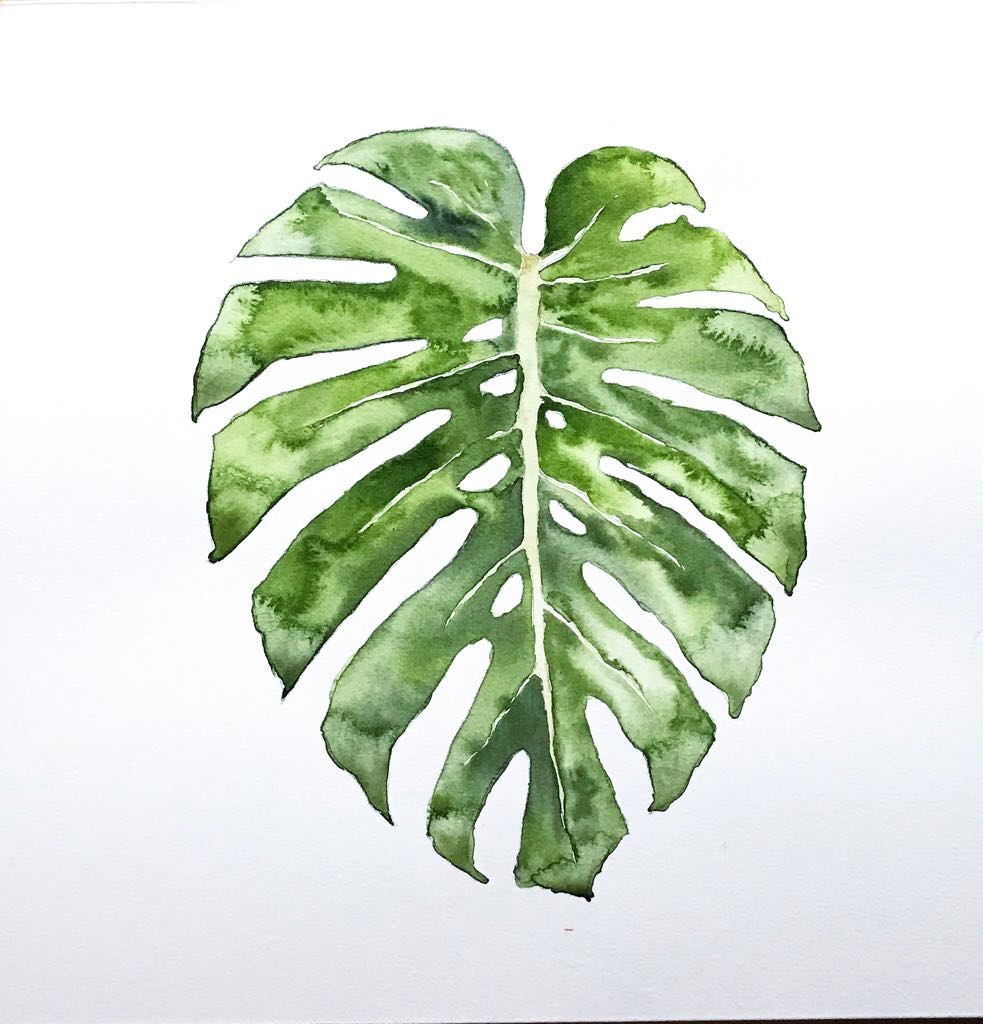 Create your own art like this Monstera Leaf