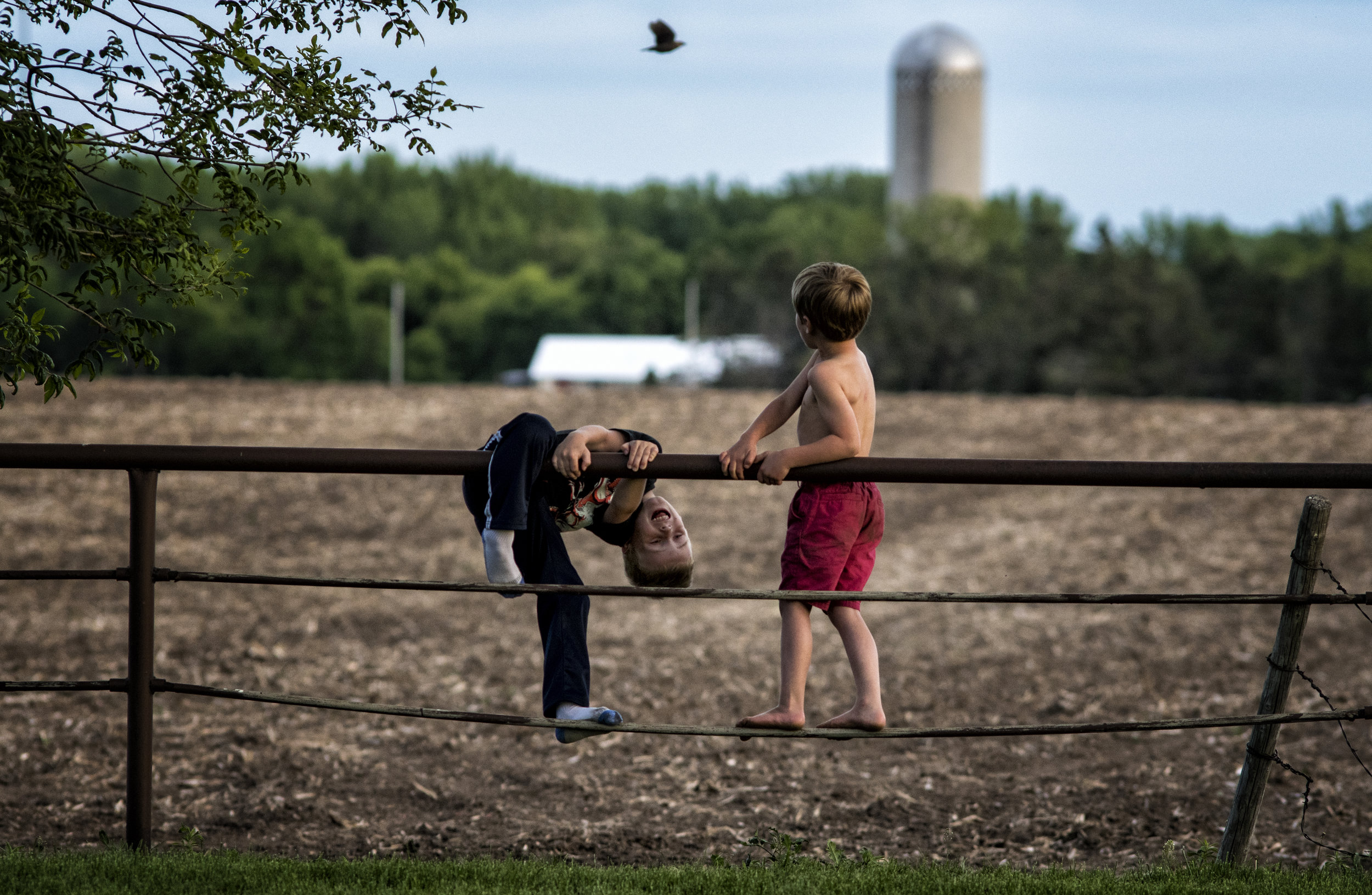 Cousins Alvie Bearinger (left) and Hank Johnsen (right) climb a fence at their Great Uncle Tom's house, overlooking the Kester homestead.