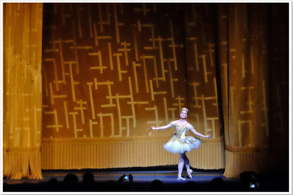 I watched a ballet performance in New York.