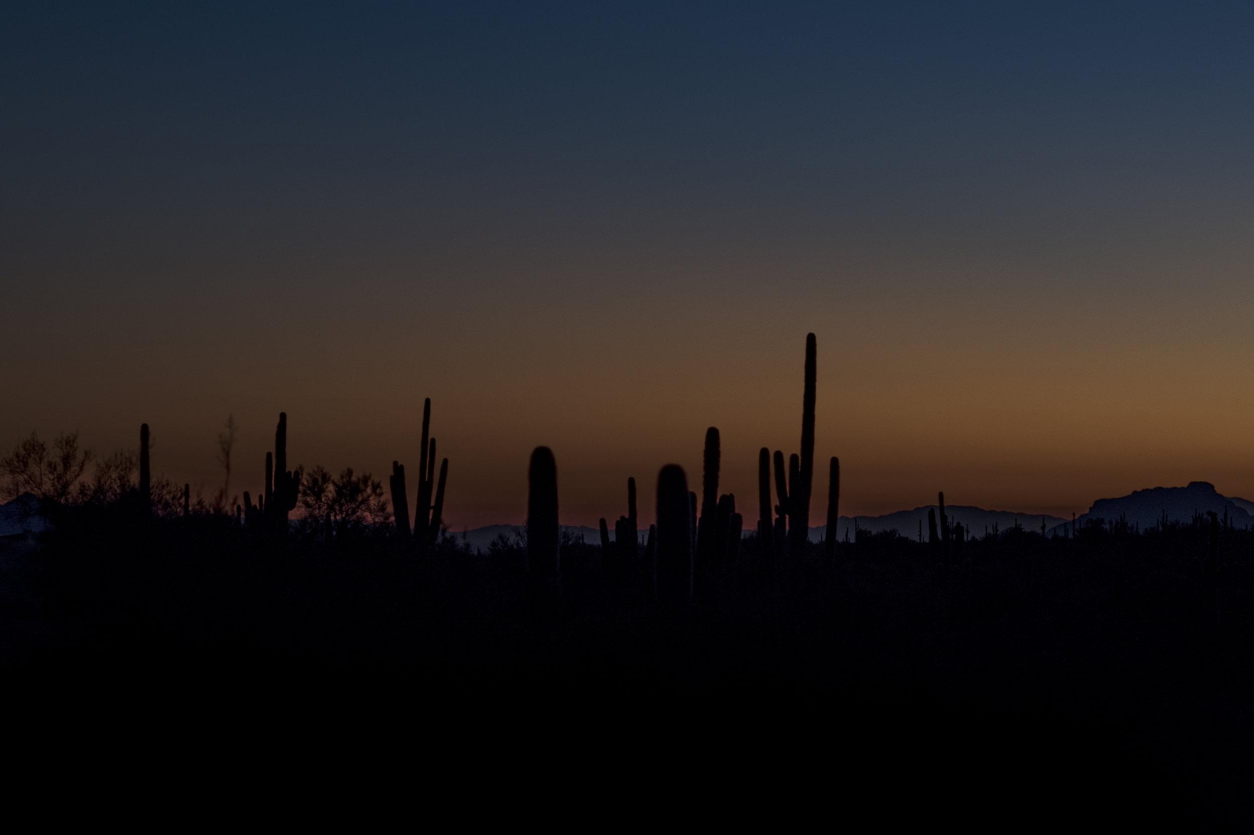 Dusk in the desert.