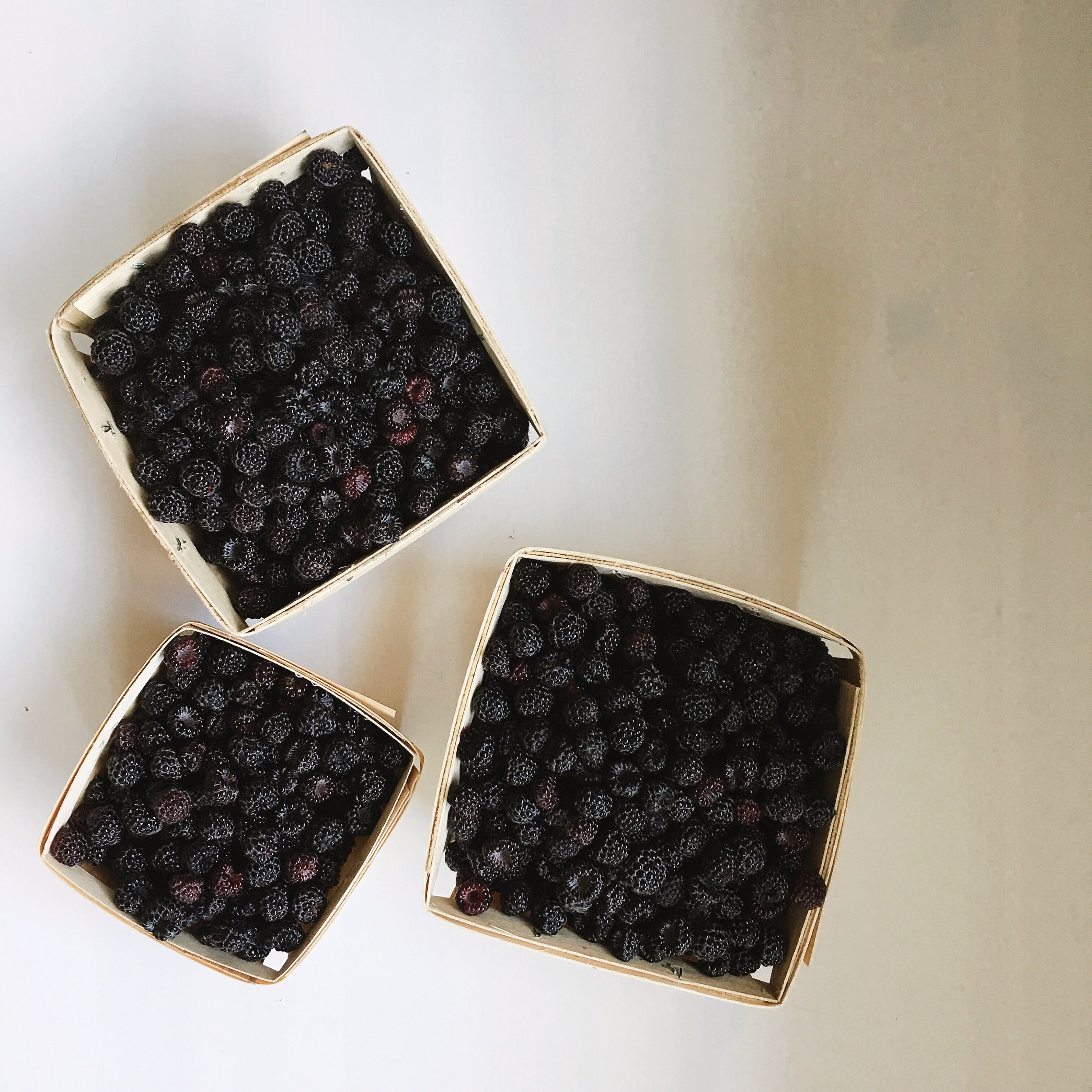 WE HAVE A FEW BLACK RASPBERRY BUSHES...JUST ONE OR TWO...THE PREVIOUS OWNERS OF OUR HOME WERE JAM MAKERS FOR SURE.