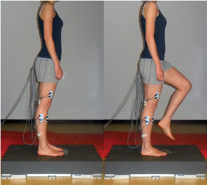 "Hmmmm…  The question is: ""is the earlier activation a good thing""?  What do you say?  ""A study of patients with chronic ankle instability (CAI) suggests the onset of knee and ankle muscle activity occurs significantly earlier when shoes and orthoses are worn than when the patients are barefoot.""   http://lermagazine.com/issues/october/shoes-orthoses-improve-muscle-activation-onset-in-unstable-ankles"