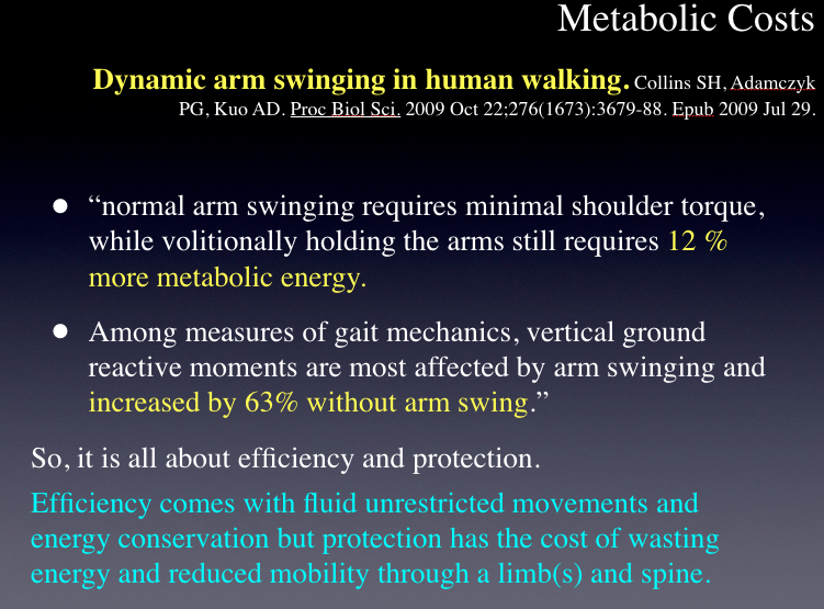 """So you do not think arm swing is important huh ? Read these 2 stats and recalibrate your thinking.    This was yet another slide from last nights well attended teleseminar. Those that attended learned all of the up to date facts that doctors, trainers, coaches, therapists need to quickly understand what factors to look for when observing someones gait. Including our favorite, """"what you see is not the problem in their gait, rather it is there strategy around the faulty parts, problem or pain.""""   If you think that changing arm swing at the local level is not a big deal, just digest the towering facts from this slide. Arm swing is a big deal ! It is a CPG generated big deal (Central Pattern Generator).    Sorry we missed you last night. The teleseminar was recorded and should be up on  www.onlinece.com  or  www.chirocredit.com  in a few days for you to enjoy on your own free time (and so are a few dozen of our other lectures !).    So, if you are coaching or making local-level arm-swing form running or training changes in yourself or your client, you are probably making some big mistakes. Our lecture brings this all to light for you in one place !   Arm Swing matters…….. more than any of us previously knew !   Shawn and Ivo, The Gait Guys"""