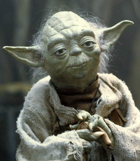 """""""Do or do not; there is no try.""""     Yoda"""