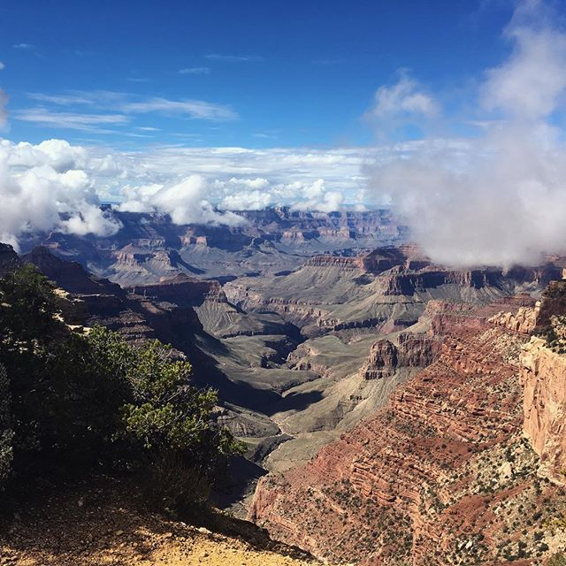 Grand Canyon filled with clouds. Hiked 24 miles across! #nature #hiking #nps100 #beautiful