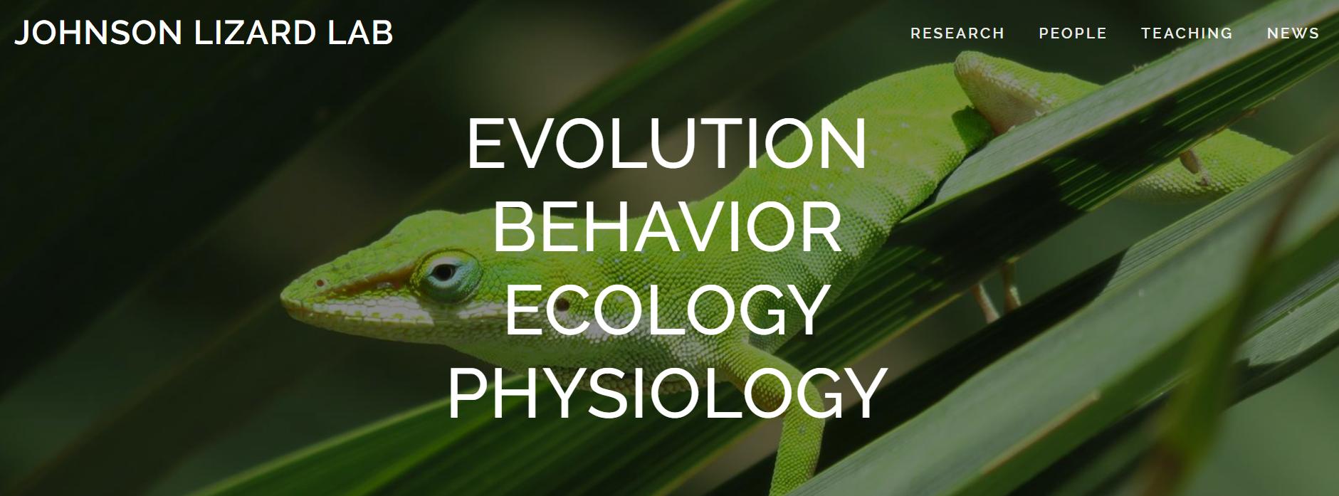 Lizard Lab Homepage