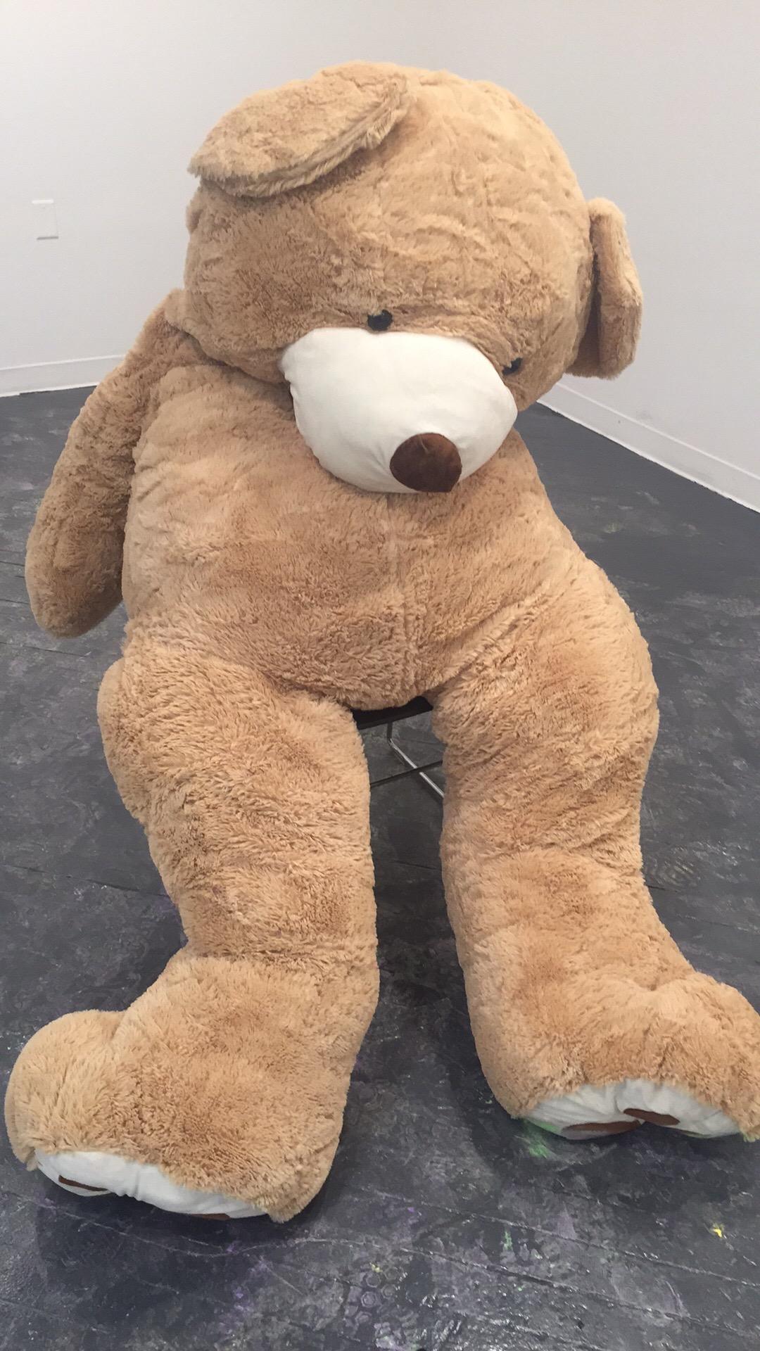 hug me or punch me bear.jpg