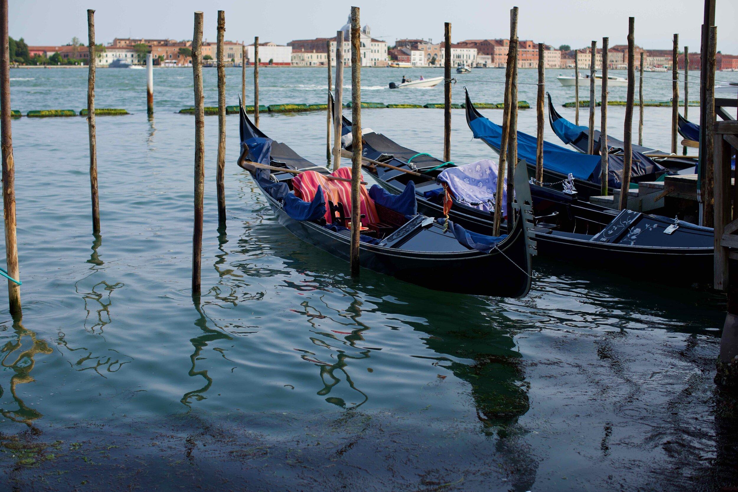 Bacina de San Marco