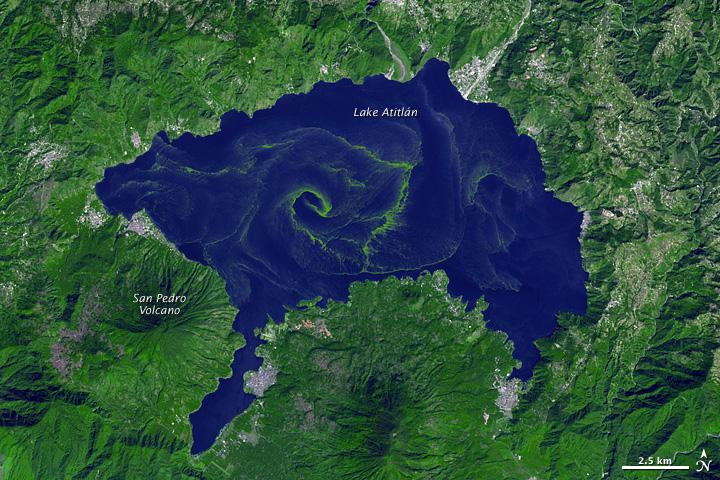 A large bloom of cyanobacteria spread across Guatemala's Lake Atitlán. Credit: NASA Earth Observatory