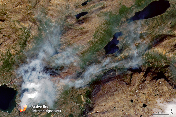 Rare wildfires in western Greenland. Credit: NASA Earth Observatory