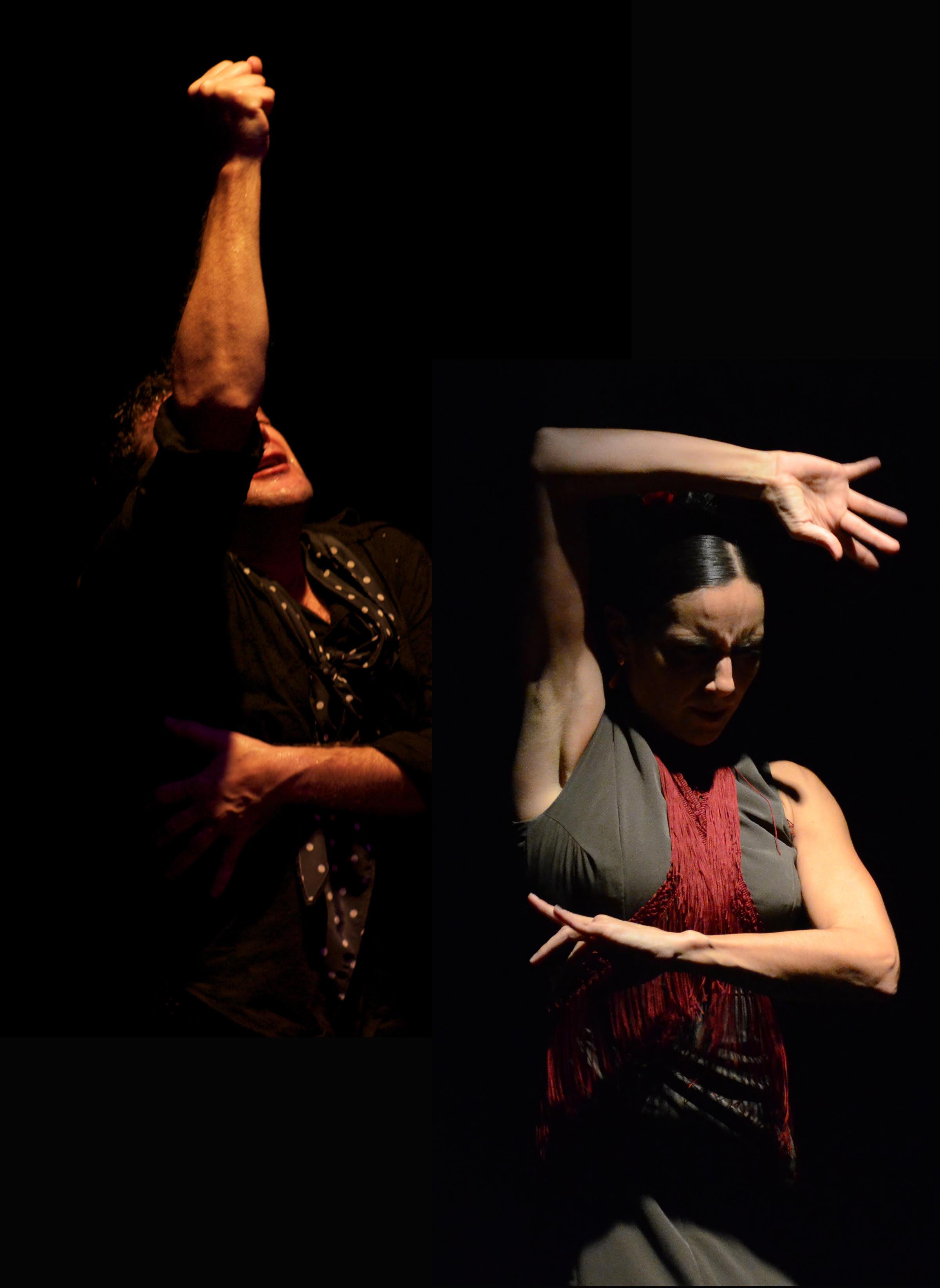 Entre Flamenco.jpg