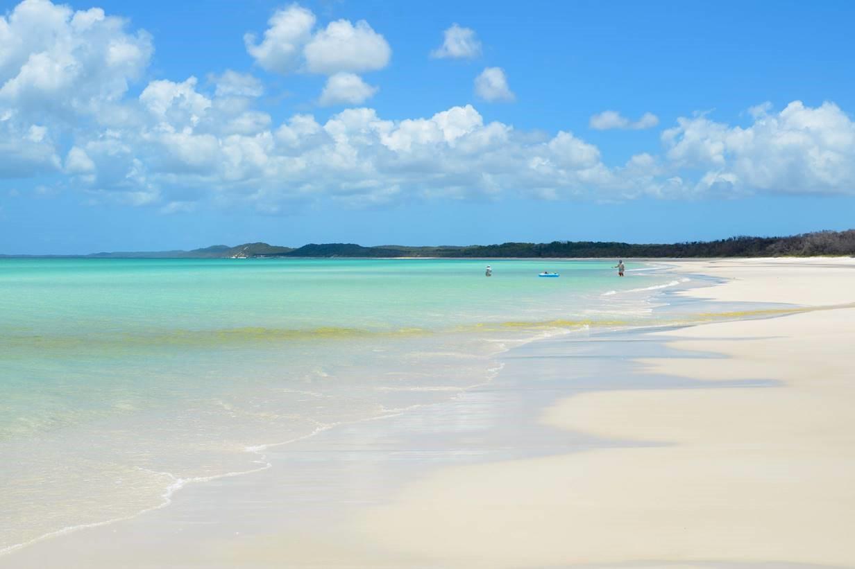Platypus Bay.jpg