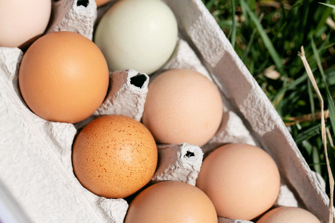 Our pasture raised eggs are like nothing else.