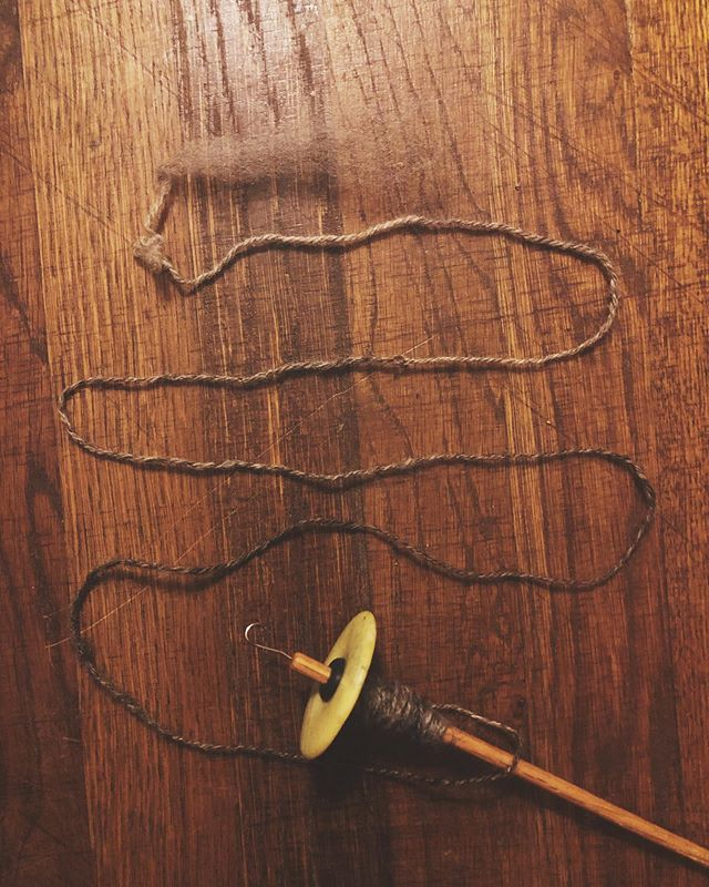 Squeezing in some drop spindle action here at the end of the day. Check out the accidental ombré 😍 #plyonthefly #finnwool #growyourownwool #slowfashion