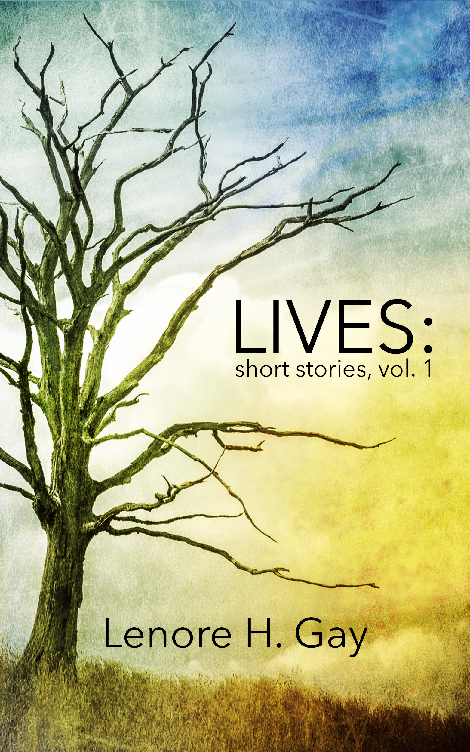 Lives: Short Stories Vol. 1 by Lenore Gay