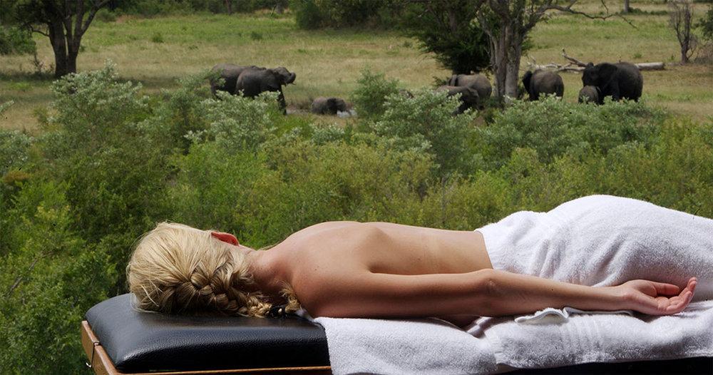 Massage devant éléphants Elephant Plains