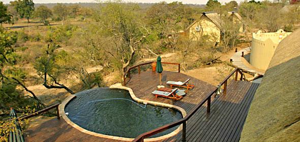 Vue panoramique piscine Elephant Plains