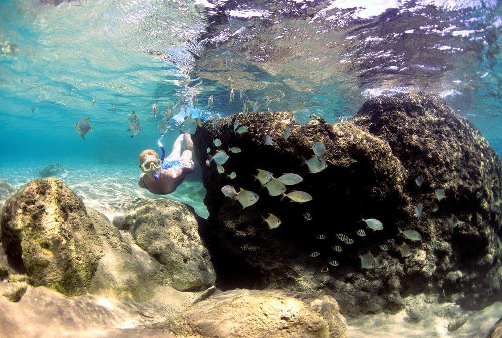 Vue sous marine Thonga Beach Lodge