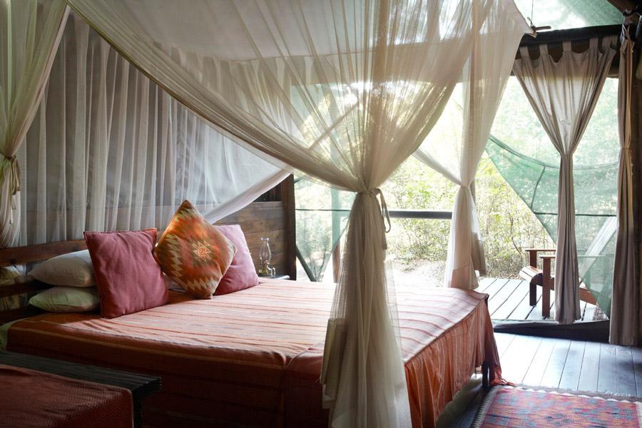 Chambre Kosi Forest Lodge