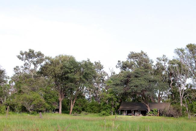 Vue du lodge de jour Machaba Camp