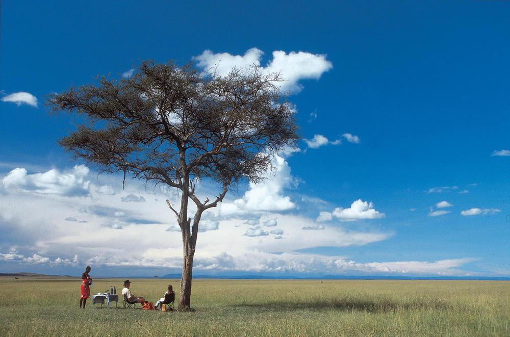 Déjeuner dans plaine Rekero Mara Camp