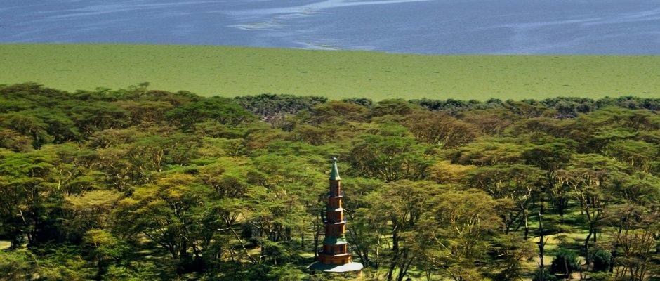 Vue panoramique du lodge Hippo Point