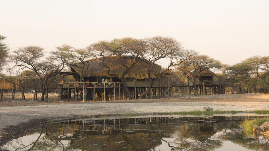 Vue extérieure Onguma Tree Top Camp