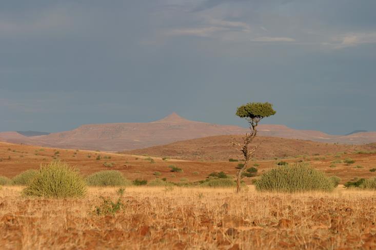 Vue panoramique Etendeka