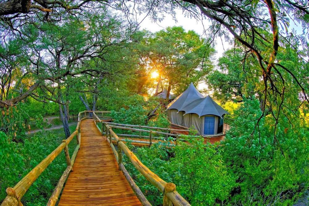 Ponton vers chambre Nambwa Tented Lodge