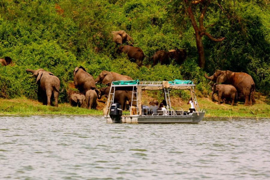 Safari en barque sur la rivière Mweya Safari Lodge