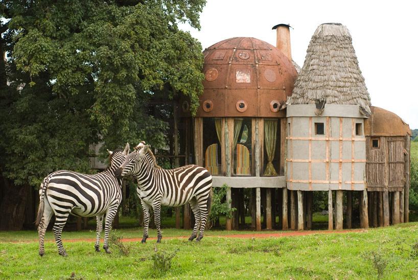 Zèbres devant Ngorongoro Crater Lodge