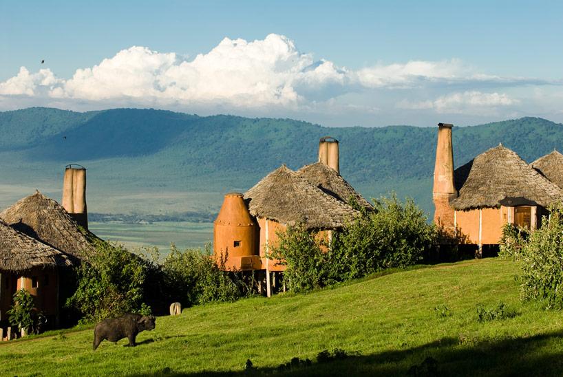 Buffle devant Ngorongoro Crater Lodge