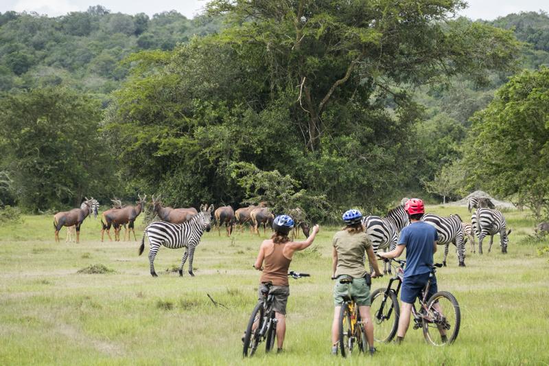 Promenade à vélos Mihingo Lodge