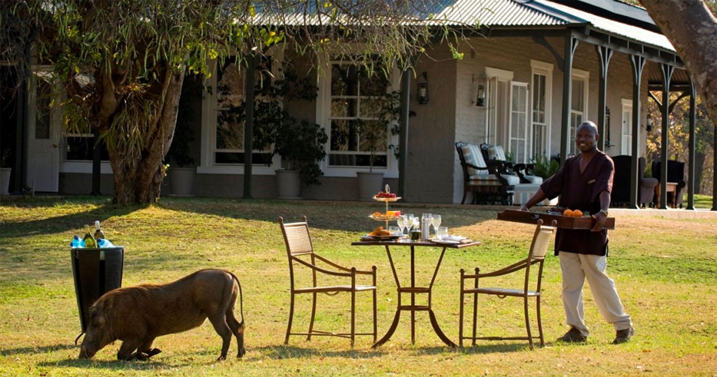 Safari Autour du Kruger - Kirkman's Kamp