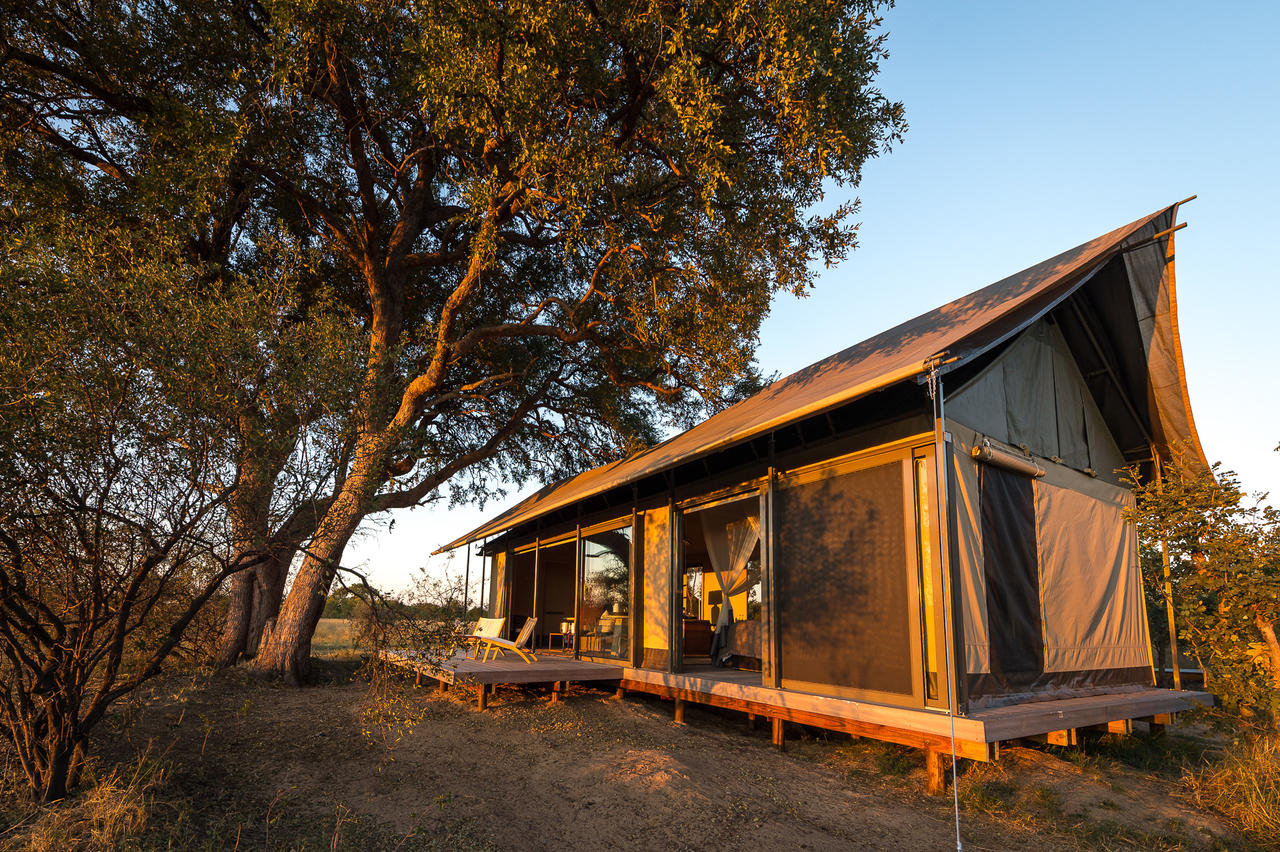 Safari Découvrez le Zimbabwé - tente de Linkwashsa